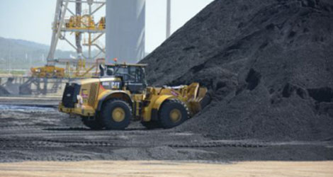 Pet coke suppliers in India